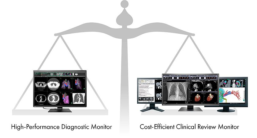 High-performance diagnostic monitor vs. cost-efficient clinical review monitor