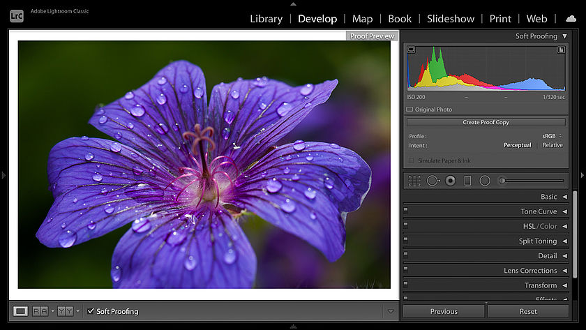 The soft proofing preview in Lightroom's Develop module
